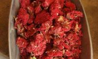 Dried-Pomegranate-Flowers1.jpg