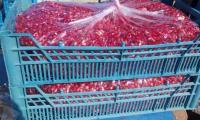 Frozen-Pomegranate-Aril.jpg